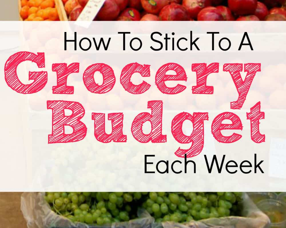 My $50 Grocery Budget