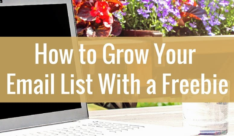 How I Grew My Email List Fast With a Freebie