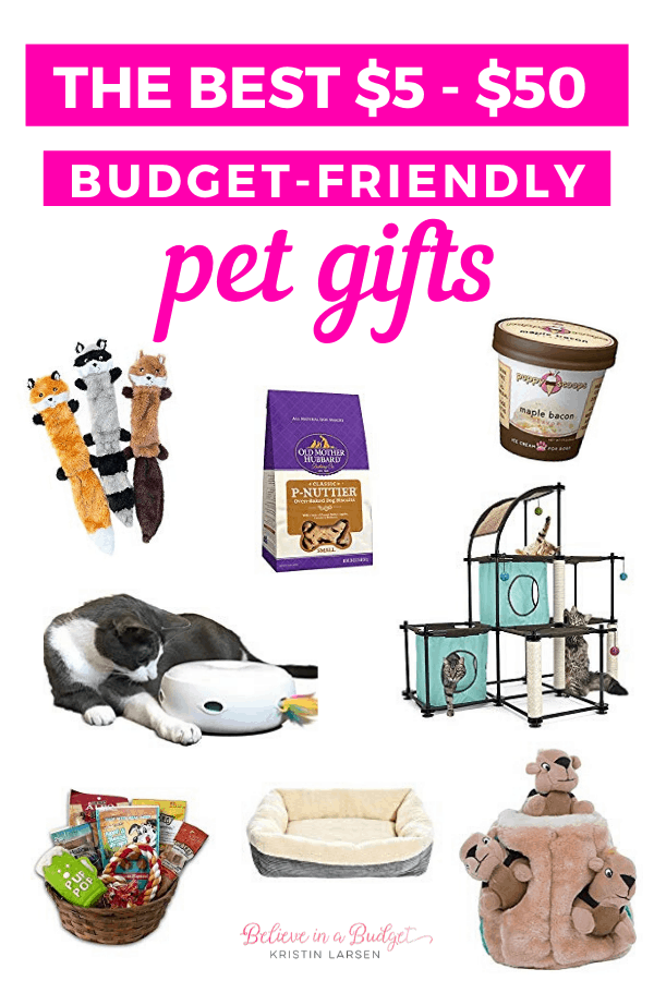 These are the best budget-friendly pet gifts that range from $5 to $50. Find something on this list for your dog or cat!